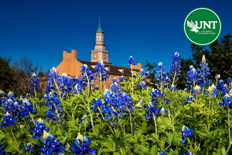 Bluebonnets with the UNT administration building